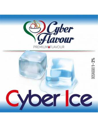 Cyber Flavour CYBER ICE 10 ml aroma concentrato